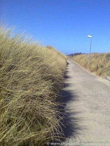 Perfekte Lage der Strandvilla Möwennest: in wenigen Gehminuten startet die Ruhe